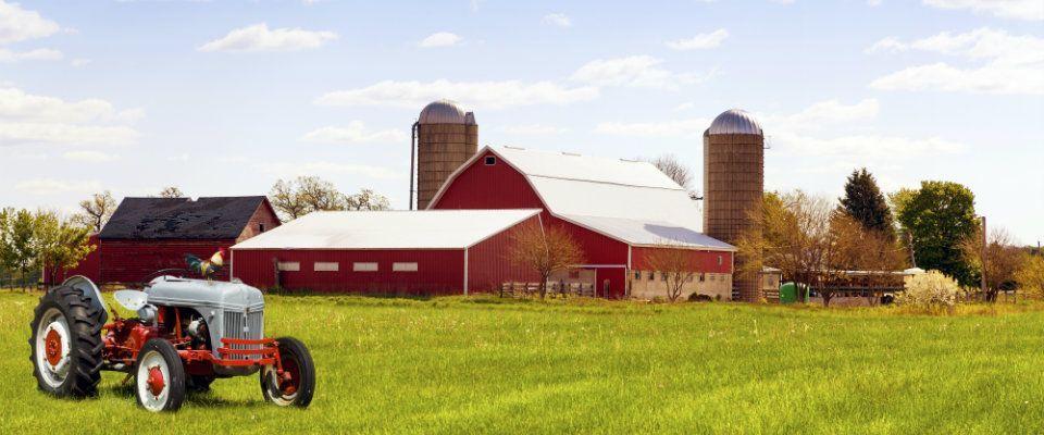 farm insurance